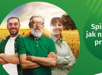 Spis rolny – wywiady telefoniczne ibezpośrednie